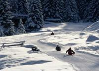 Courchevel 1650 location d 39 appartements et chalets chez ski - Office tourisme courchevel 1650 ...