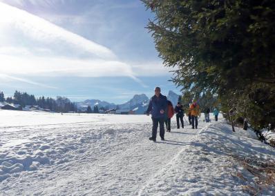 Saanenmöser - snowscape