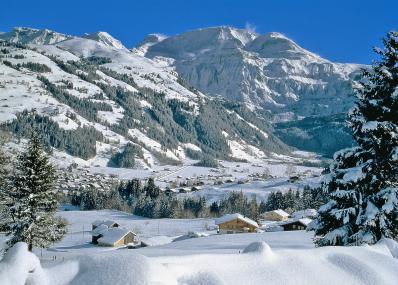 Lenk - winter panorama